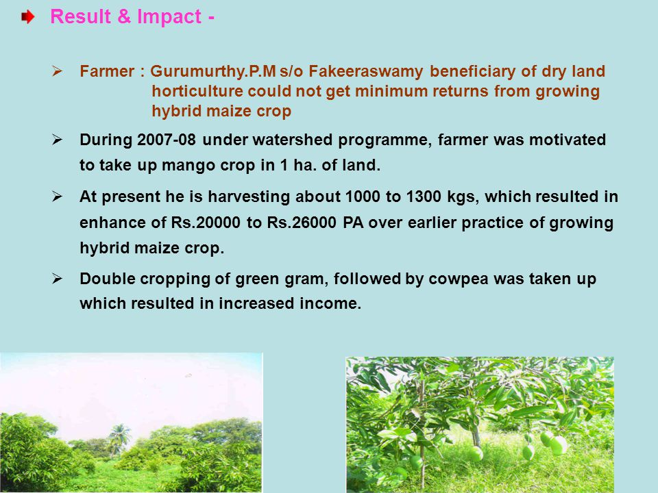 Result & Impact - Farmer : Gurumurthy.P.M s/o Fakeeraswamy beneficiary of dry land. horticulture could not get minimum returns from growing.