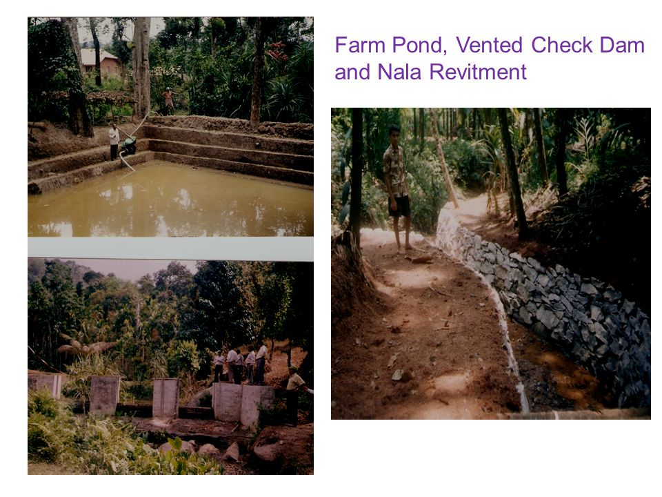 Farm Pond, Vented Check Dam