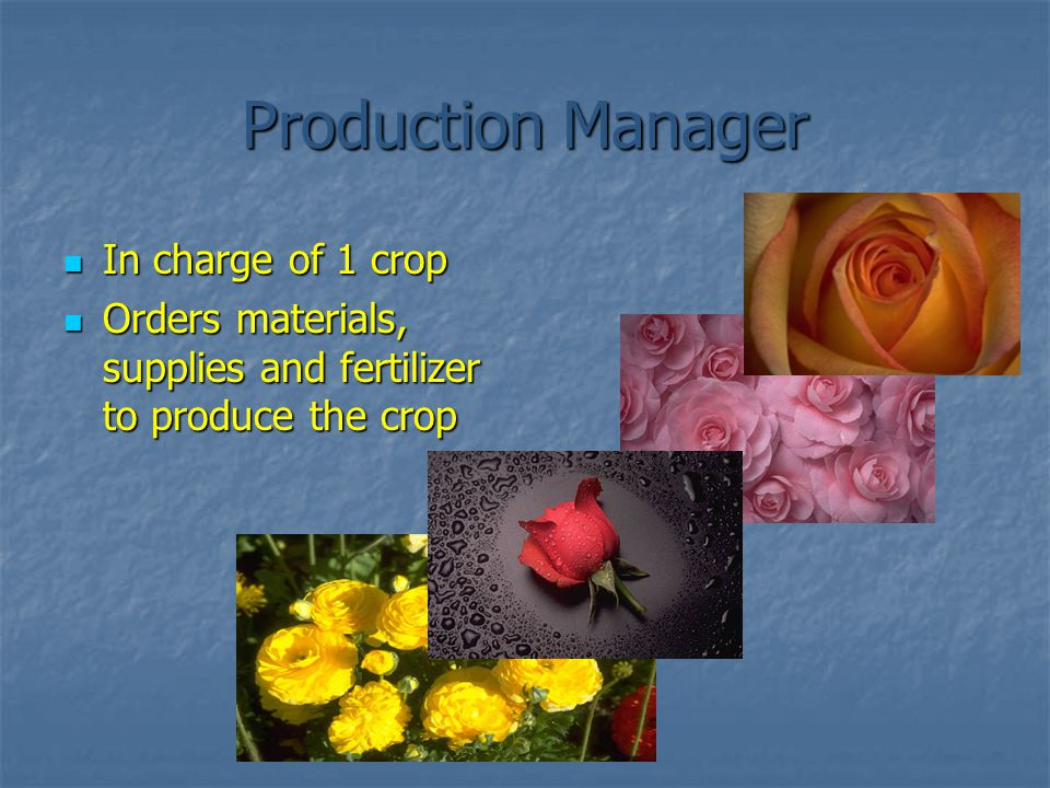Production Manager In charge of 1 crop