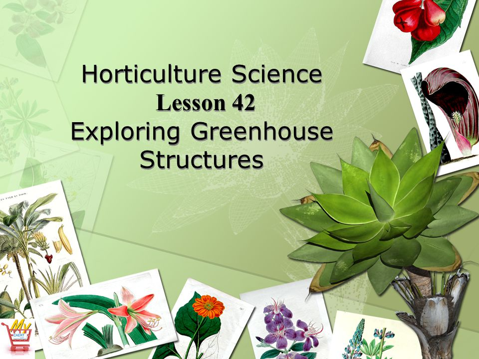 Horticulture Science Lesson 42 Exploring Greenhouse Structures