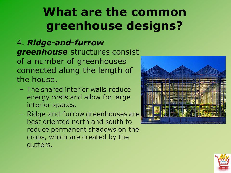 What are the common greenhouse designs