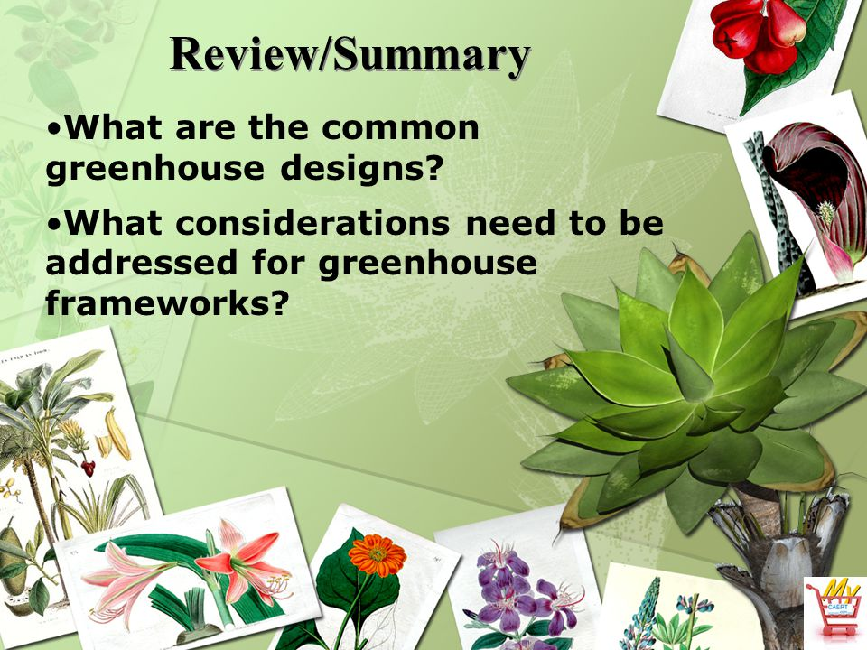 Review/Summary What are the common greenhouse designs