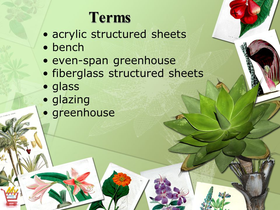Terms acrylic structured sheets bench even-span greenhouse