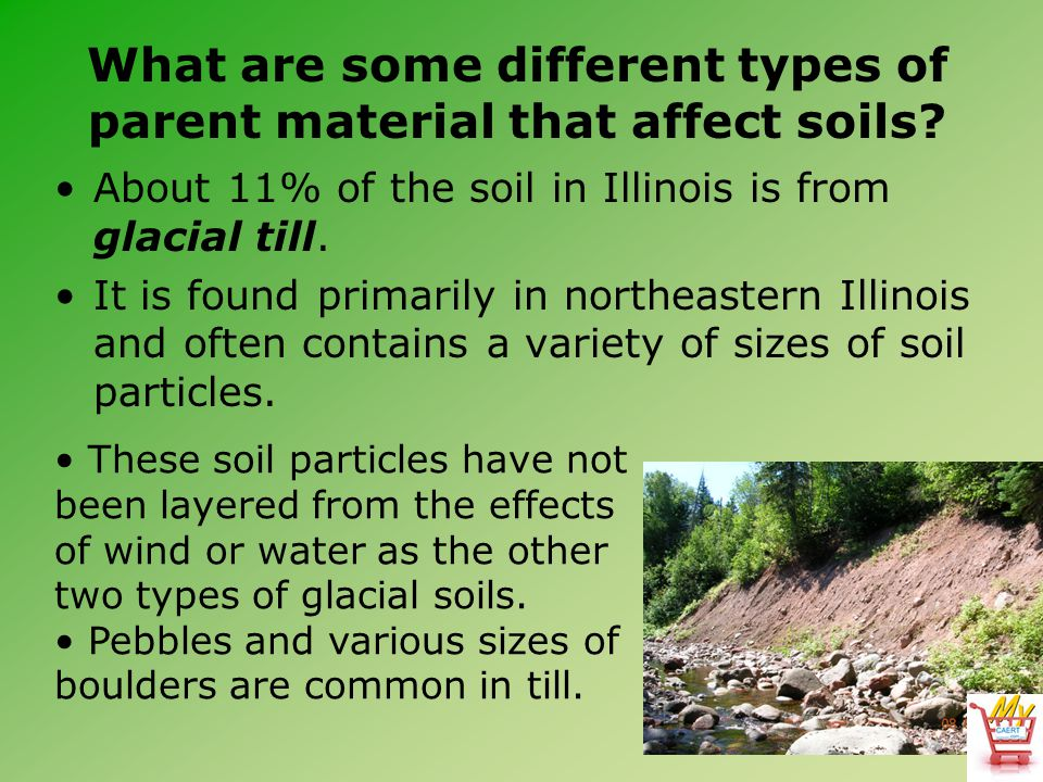 What are some different types of parent material that affect soils