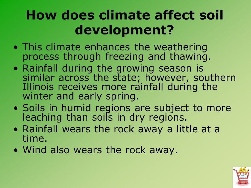 How does climate affect soil development