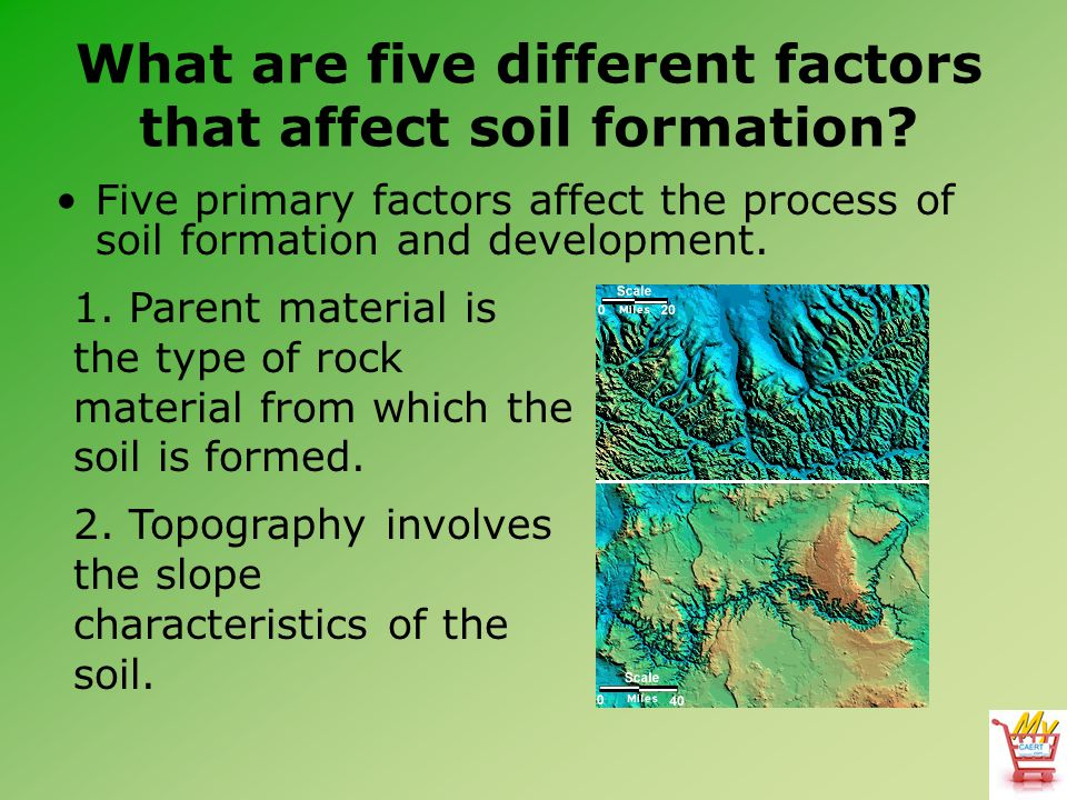Horticulture science lesson 23 understanding soil for Soil forming factors