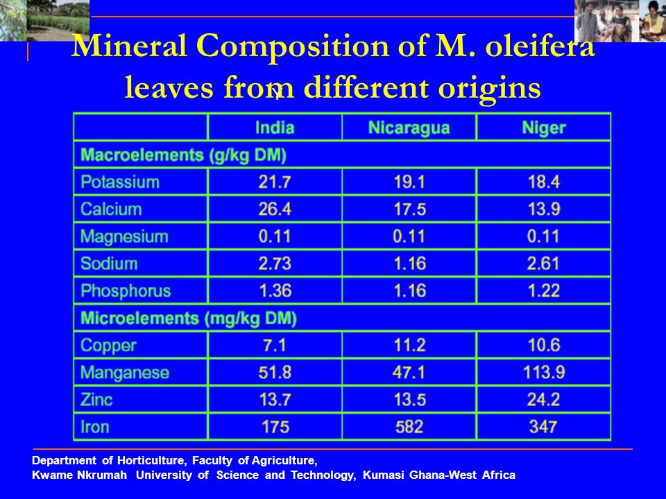 Mineral Composition of M. oleifera leaves from different origins