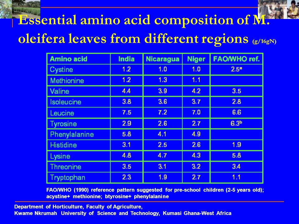 Essential amino acid composition of M