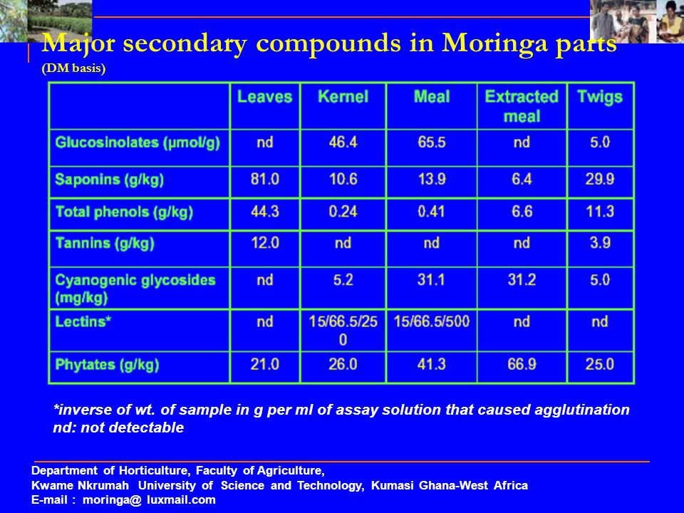 Major secondary compounds in Moringa parts (DM basis)