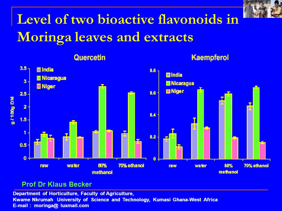 Level of two bioactive flavonoids in Moringa leaves and extracts