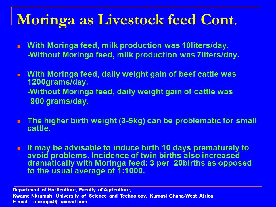 Moringa as Livestock feed Cont.