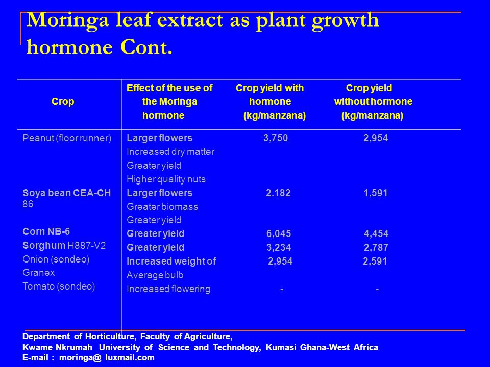 Moringa leaf extract as plant growth hormone Cont.