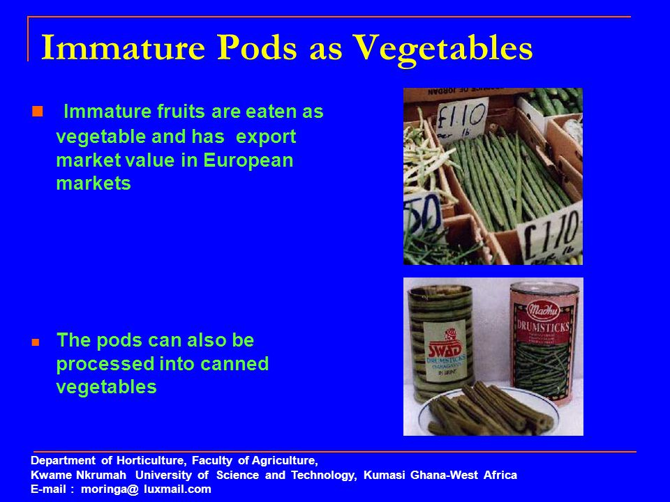 Immature Pods as Vegetables