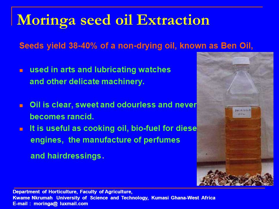 Moringa seed oil Extraction