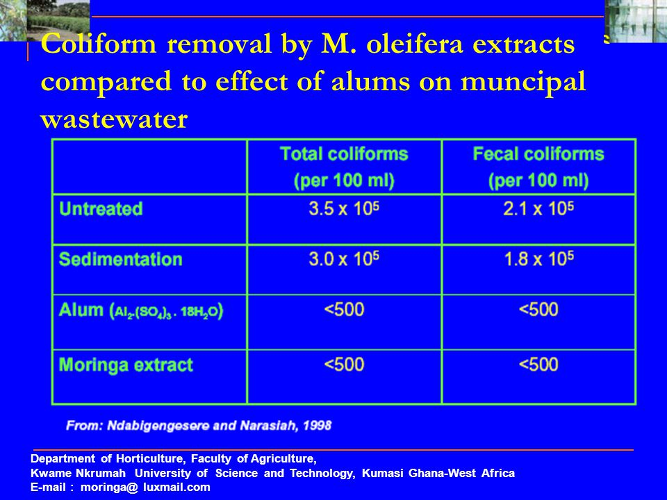 Coliform removal by M. oleifera extracts compared to effect of alums on muncipal wastewater