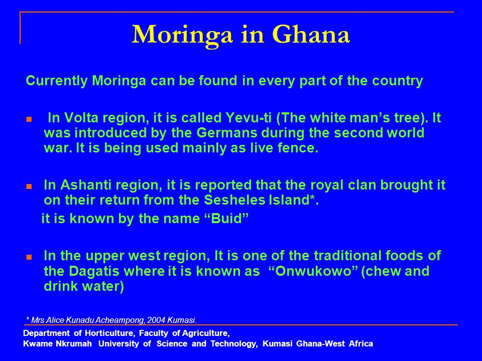 Moringa in Ghana Currently Moringa can be found in every part of the country.