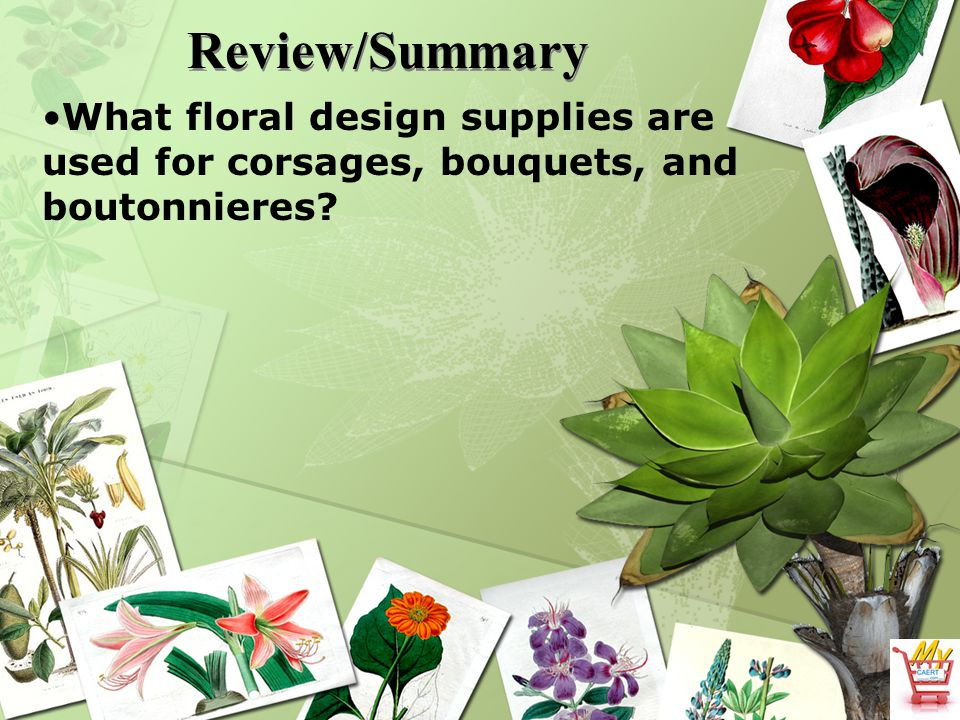 Review/Summary What floral design supplies are used for corsages, bouquets, and boutonnieres