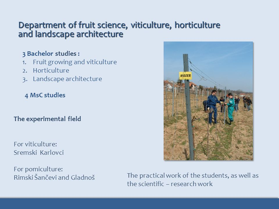 Department of fruit science, viticulture, horticulture and landscape architecture