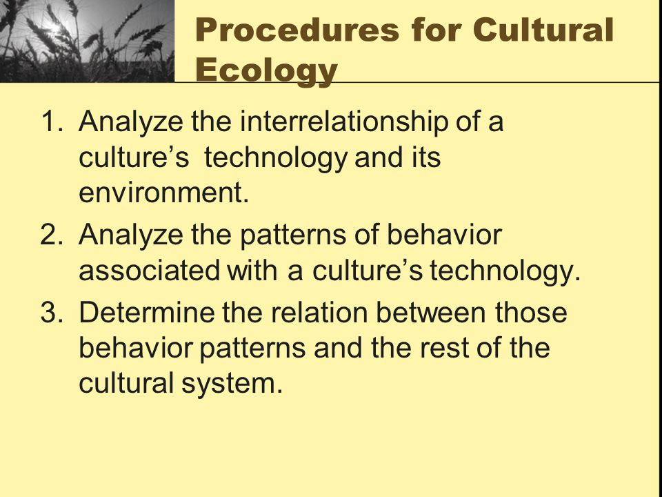 Procedures for Cultural Ecology