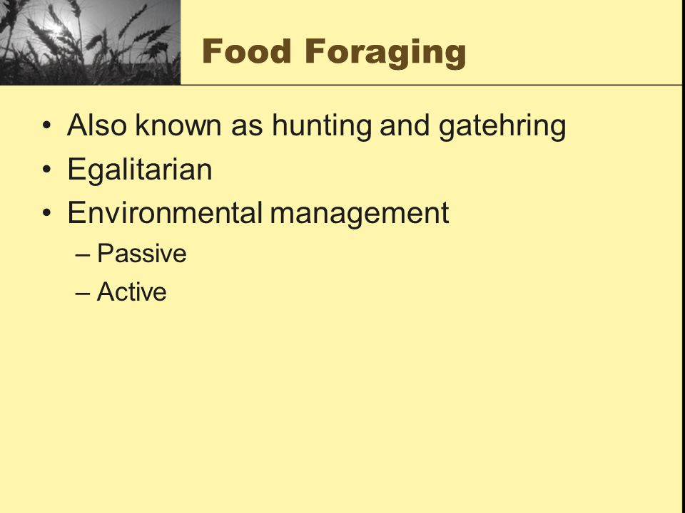 Food Foraging Also known as hunting and gatehring Egalitarian