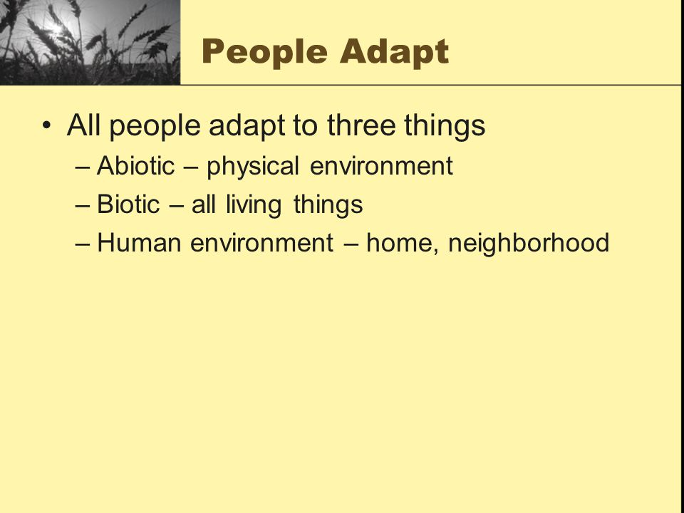 People Adapt All people adapt to three things