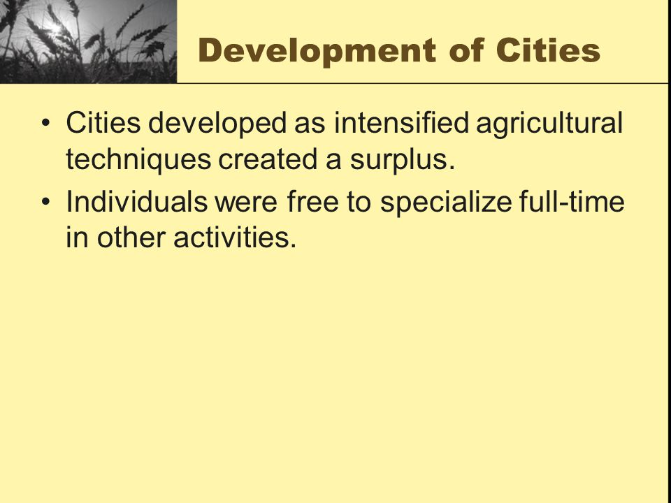 Development of Cities Cities developed as intensified agricultural techniques created a surplus.