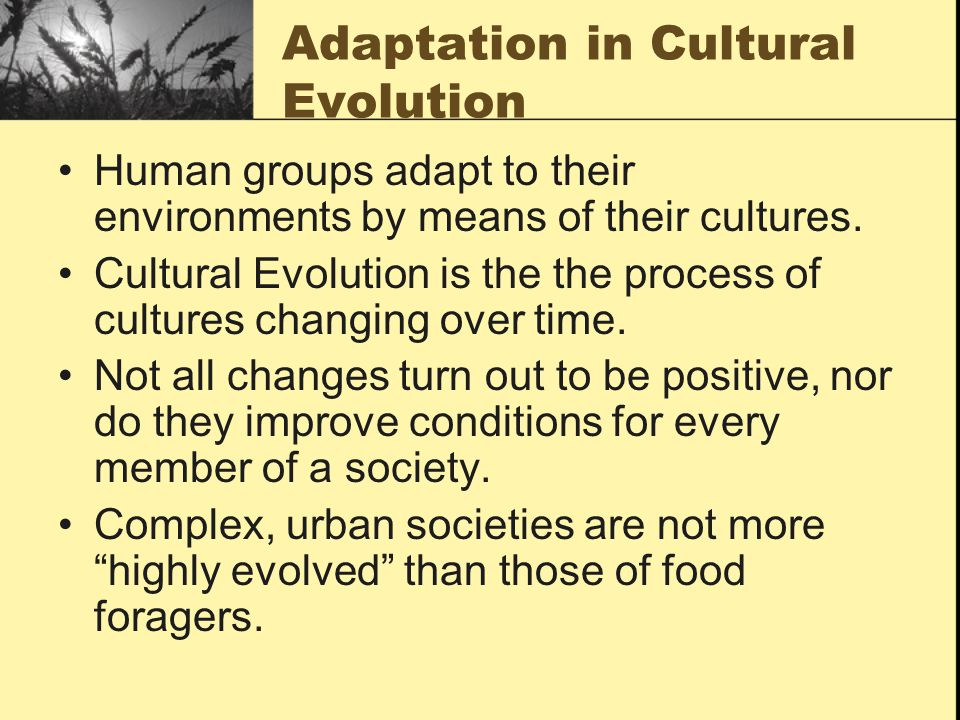 Adaptation in Cultural Evolution