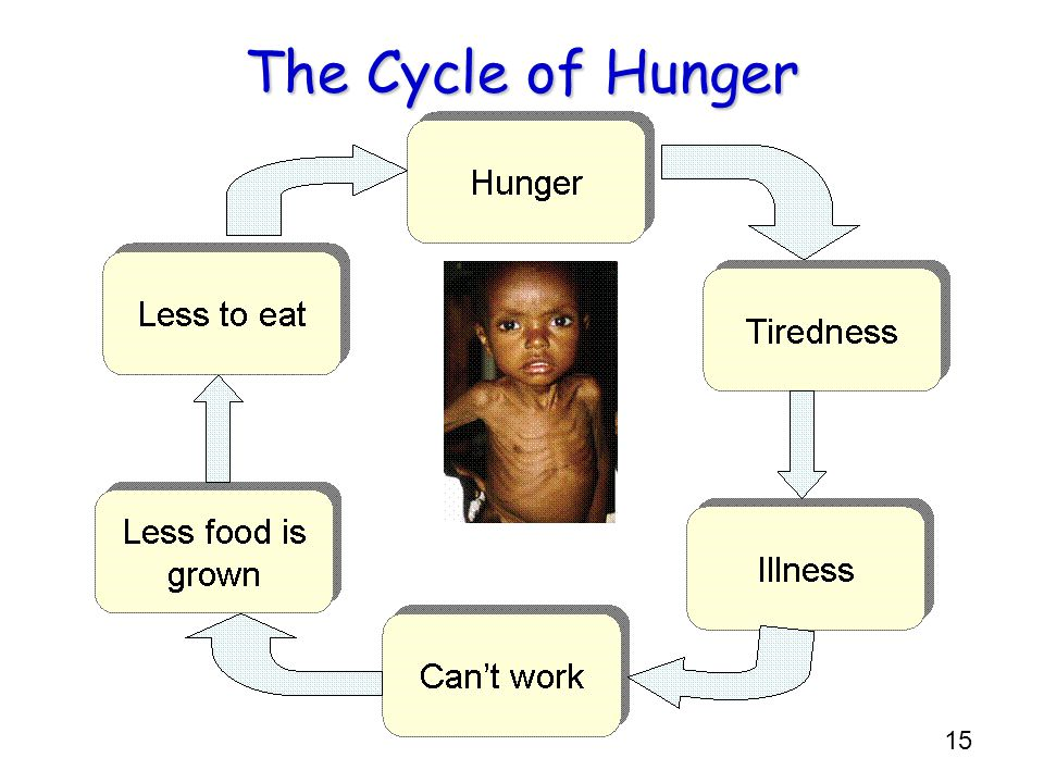 The Cycle of Hunger