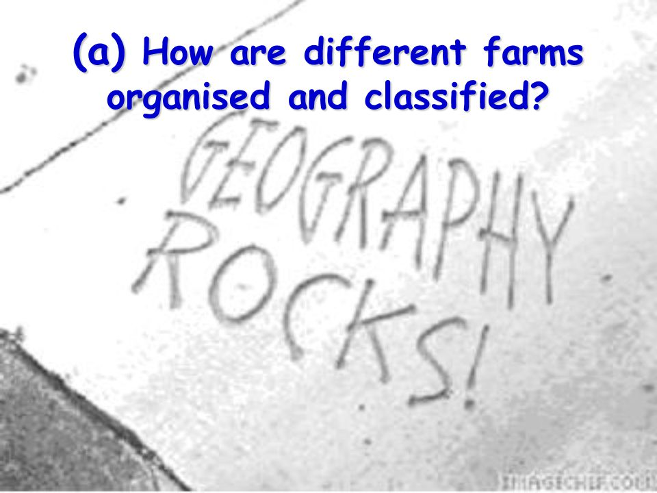 (a) How are different farms organised and classified