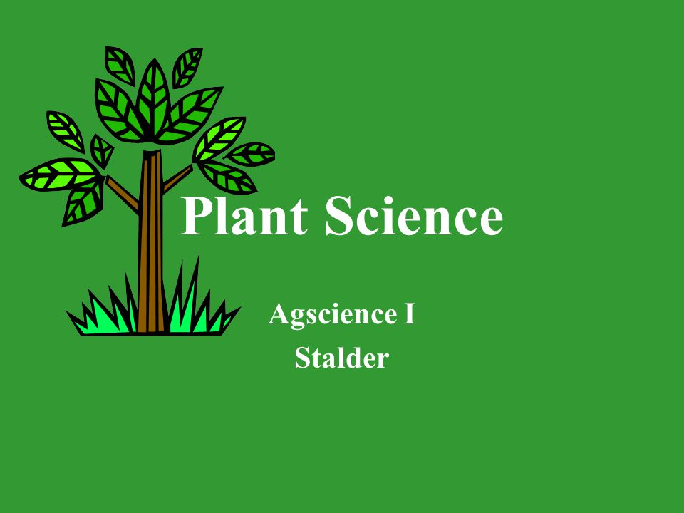 Plant Science Agscience I Stalder