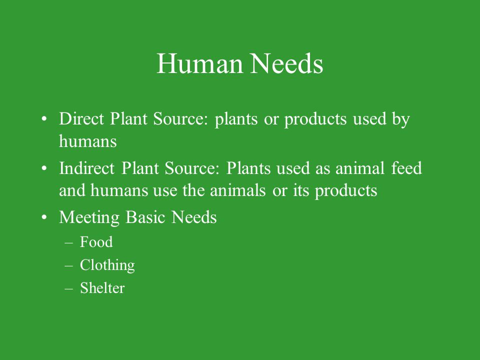 Human Needs Direct Plant Source: plants or products used by humans