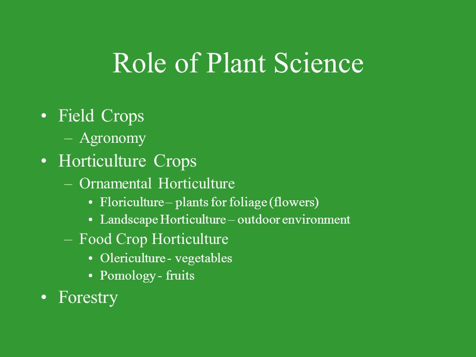 Role of Plant Science Field Crops Horticulture Crops Forestry Agronomy