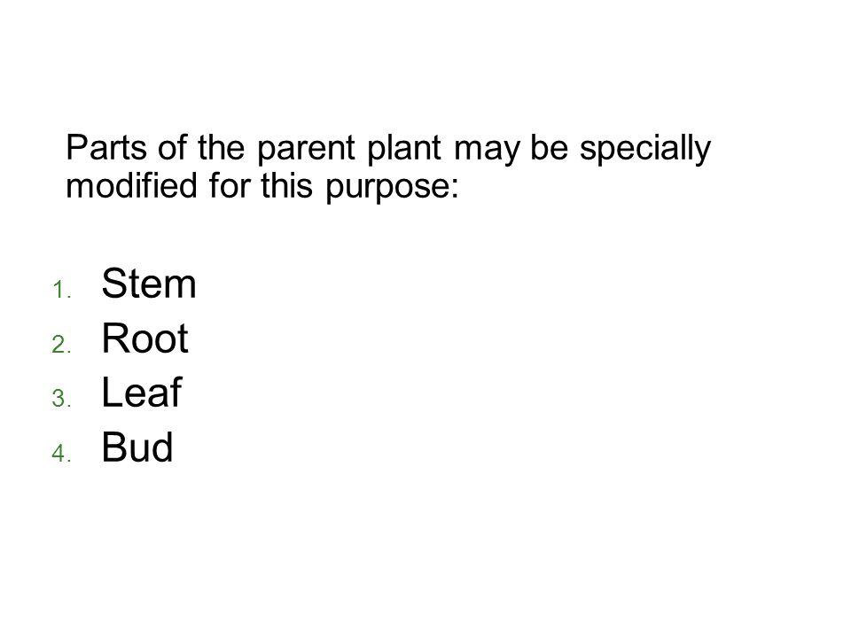 Parts of the parent plant may be specially modified for this purpose: