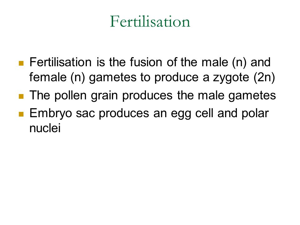 Fertilisation Fertilisation is the fusion of the male (n) and female (n) gametes to produce a zygote (2n)