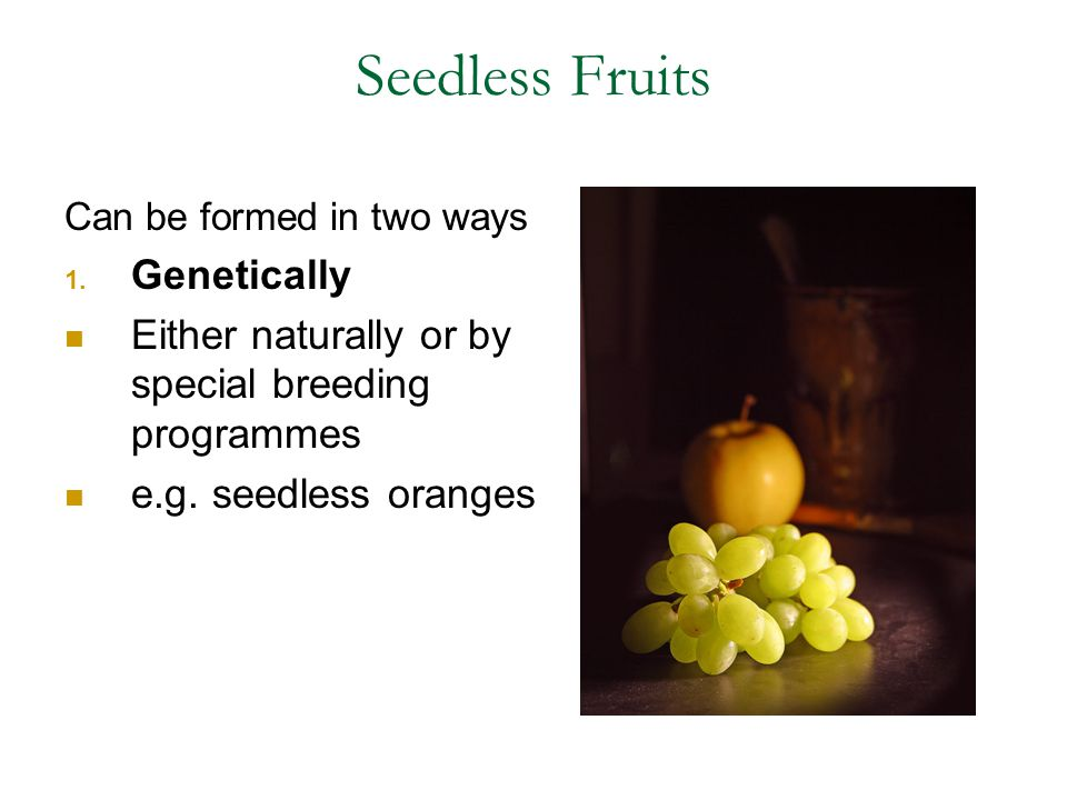 Seedless Fruits Genetically
