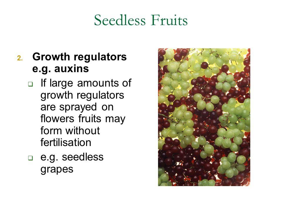 Seedless Fruits Growth regulators e.g. auxins