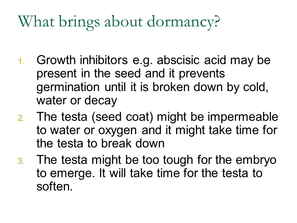 What brings about dormancy
