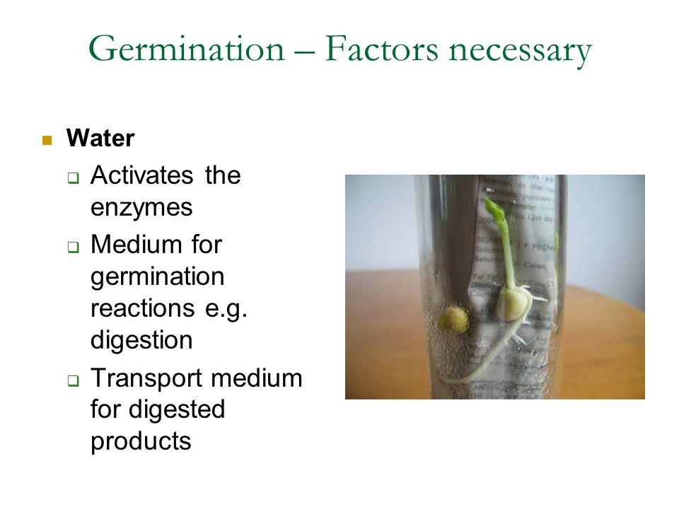 Germination – Factors necessary