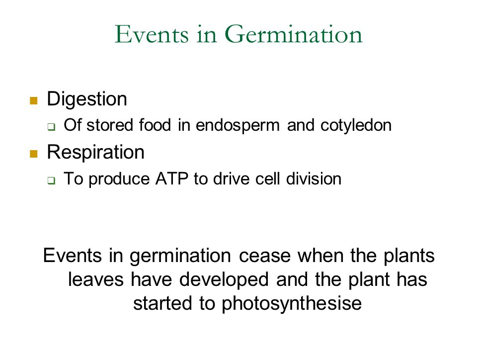 Events in Germination Digestion Respiration