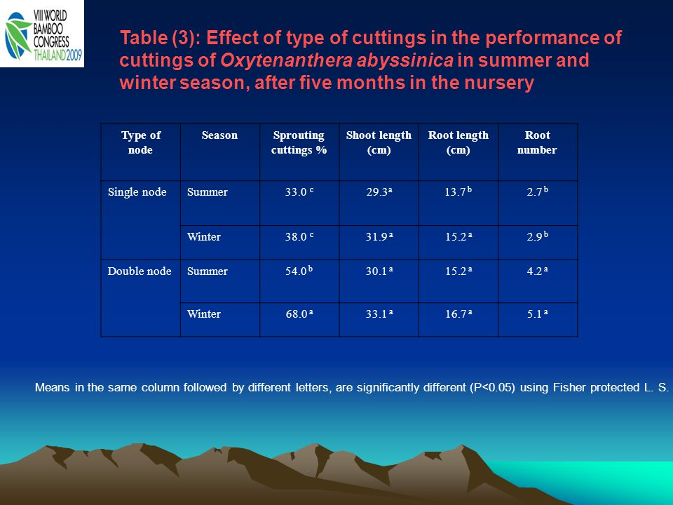 Table (3): Effect of type of cuttings in the performance of cuttings of Oxytenanthera abyssinica in summer and winter season, after five months in the nursery