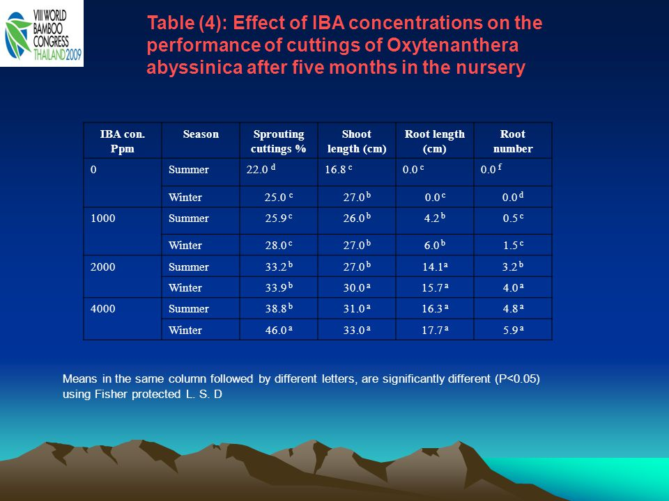 Table (4): Effect of IBA concentrations on the performance of cuttings of Oxytenanthera abyssinica after five months in the nursery