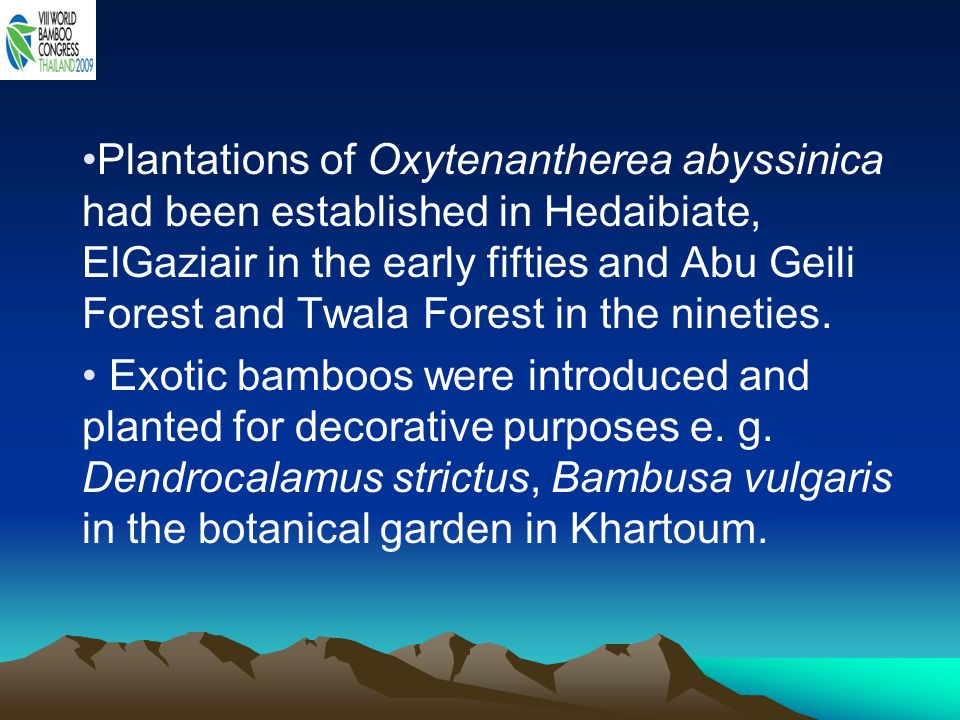 Plantations of Oxytenantherea abyssinica had been established in Hedaibiate, ElGaziair in the early fifties and Abu Geili Forest and Twala Forest in the nineties.