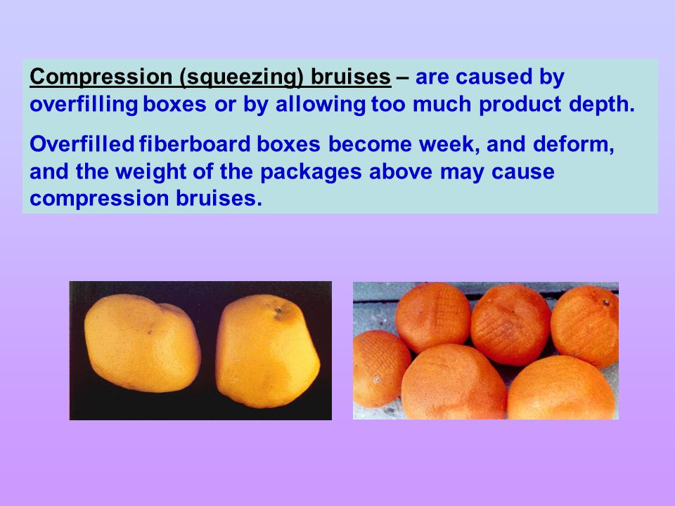 Compression (squeezing) bruises – are caused by overfilling boxes or by allowing too much product depth.