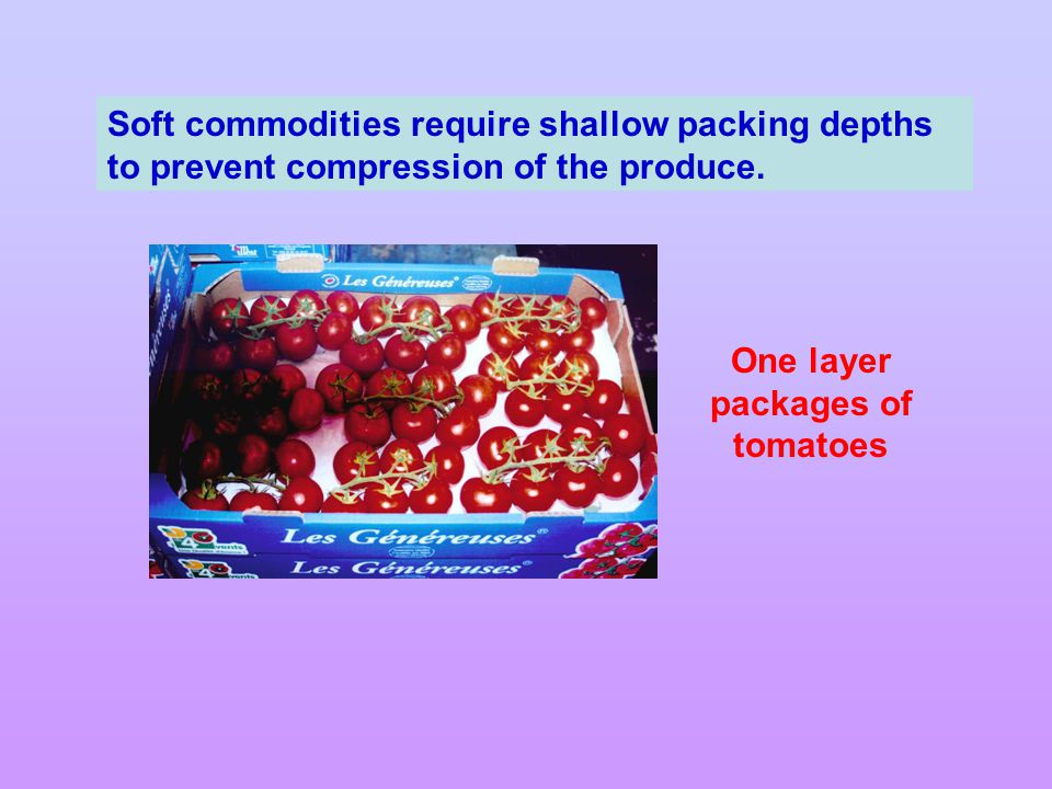 One layer packages of tomatoes