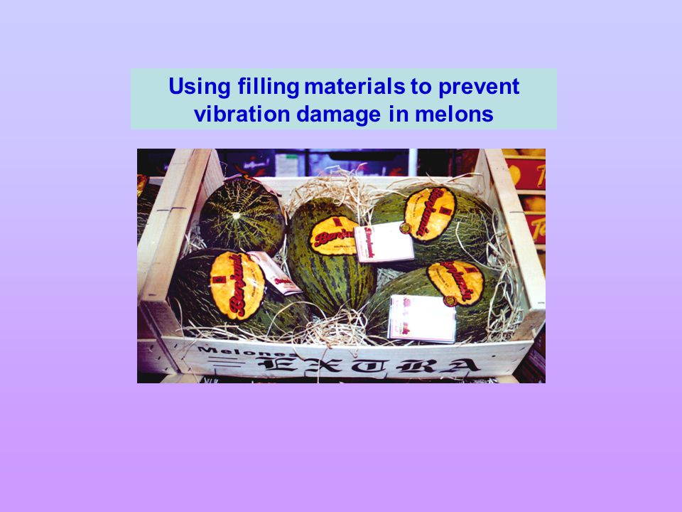 Using filling materials to prevent vibration damage in melons