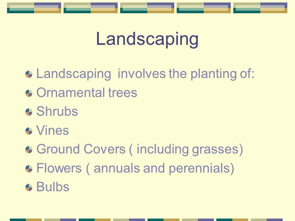Landscaping Landscaping involves the planting of: Ornamental trees
