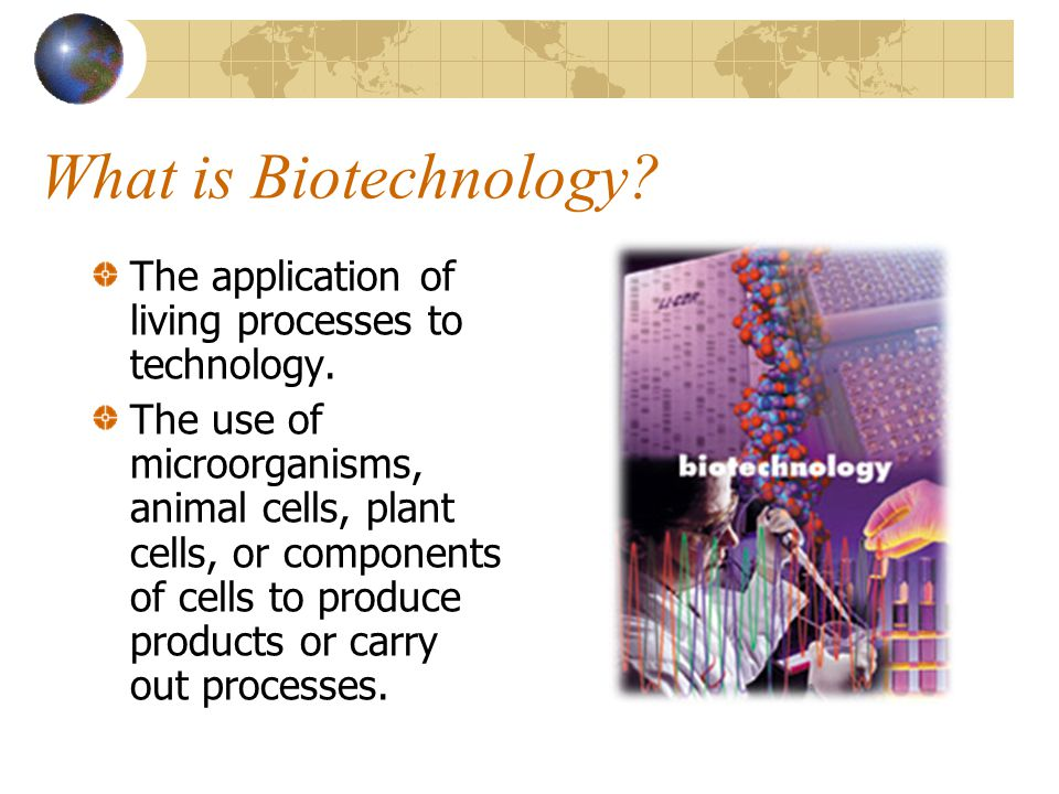 What is Biotechnology The application of living processes to technology.