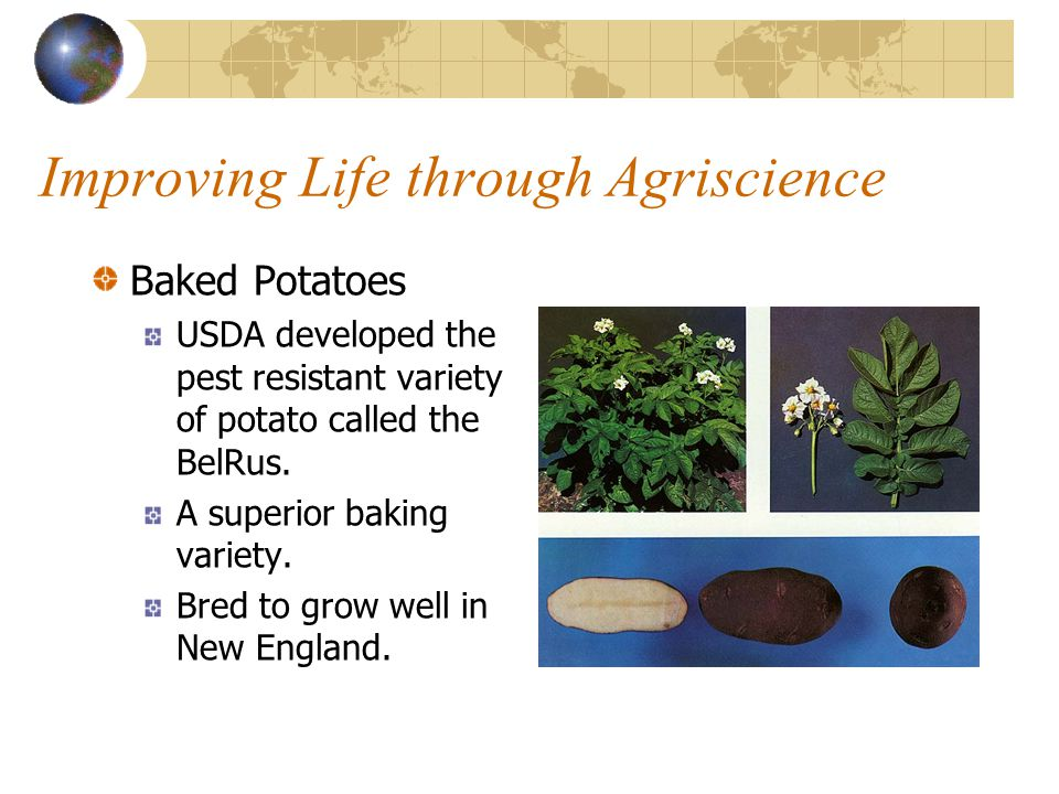 Improving Life through Agriscience