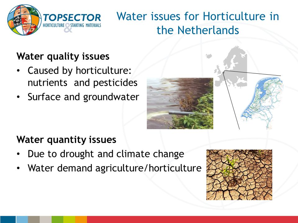 Water issues for Horticulture in the Netherlands