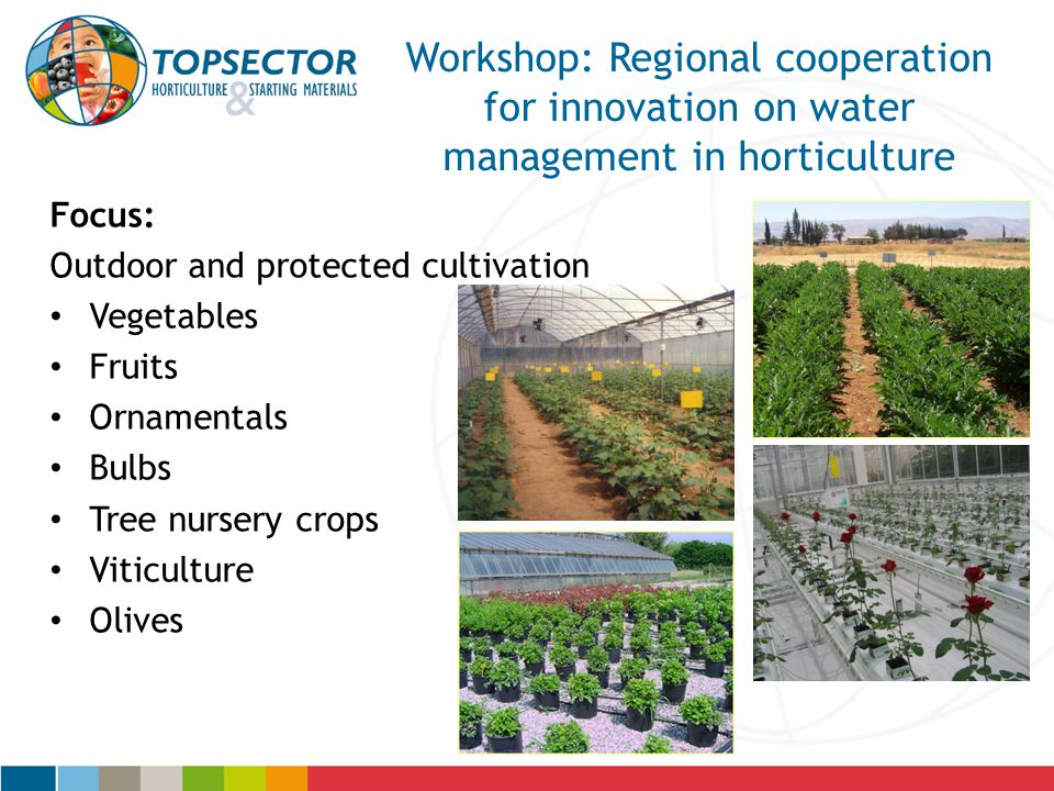 15/04/2017 Workshop: Regional cooperation for innovation on water management in horticulture. Focus: